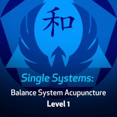 Single Systems: Balance System Acupuncture - Level 1