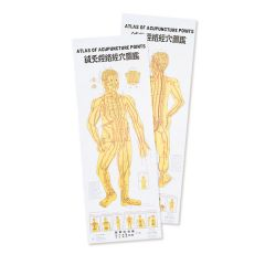 Atlas of Acupuncture Charts