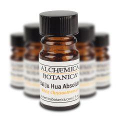 Alchemica Botanica Bai Ju Hua